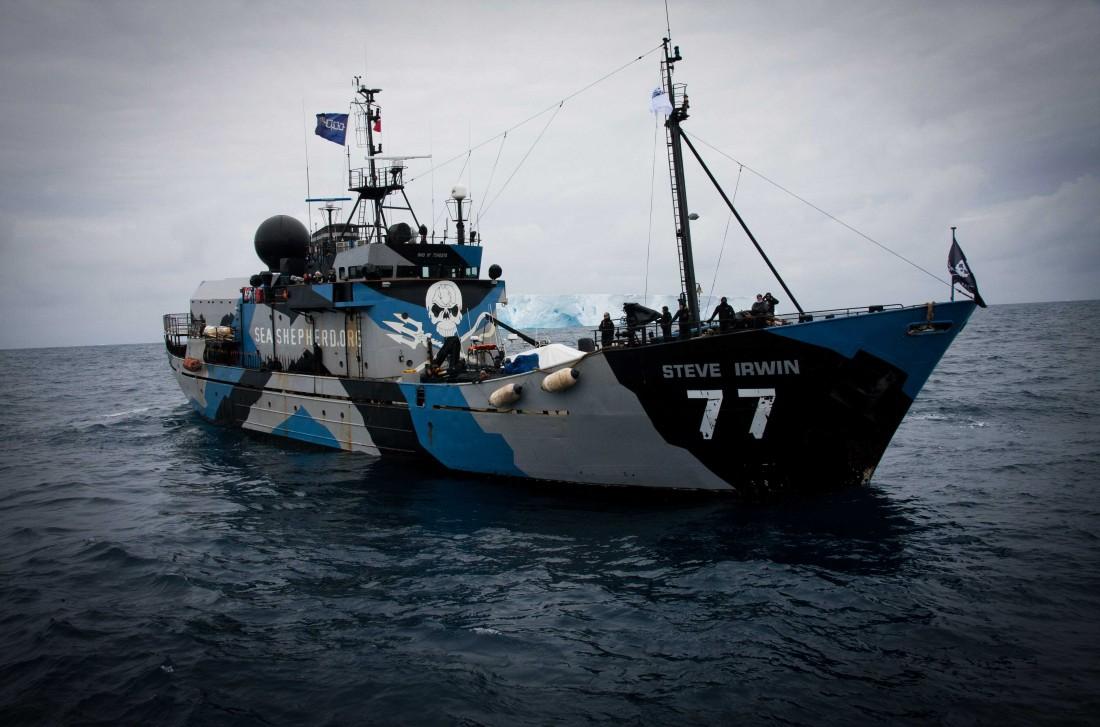 Le Steve Irwin, un des navires de la Sea Shepherd. Une association controversée pour ses actions anti-braconnage ©Sea Shepherd