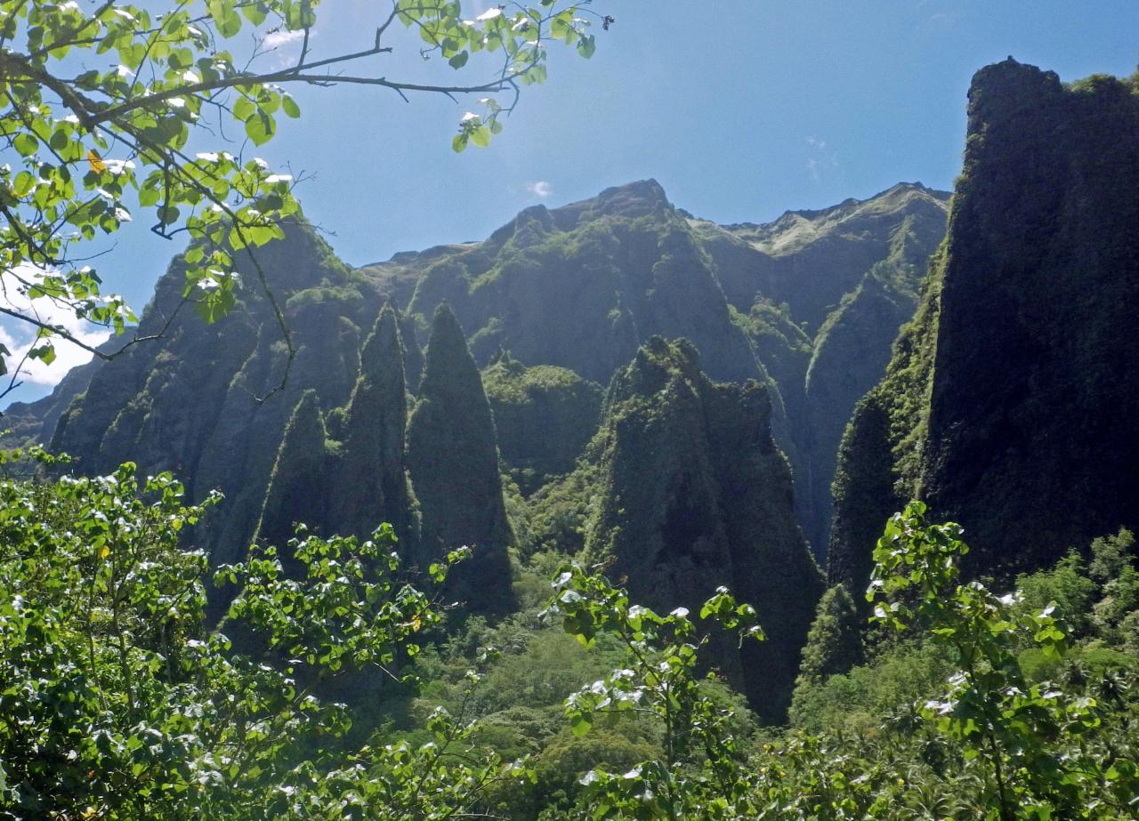 Les îles Marquises sont de très jeunes îles volcaniques, sans récifs ni lagons. Juste des pics montagneux et des falaises de basalte ©DR