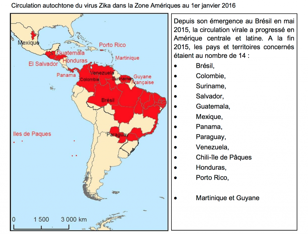Situation épidémiologique dans la Zone Amériques © ARS Martinique