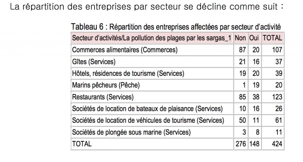 Etude d'impact économique sur l'invasion des sargasses © CCI Iles de Guadeloupe