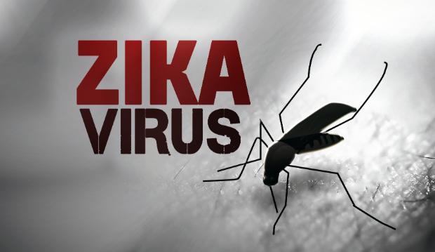Zika :  «Urgence de santé publique de portée mondiale» décrétée par l'OMS