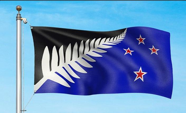 L'autre drapeau proposé au référendum. Celui porte la fougère maori, emblème des All Blacks et la Croix du sud ©Capture