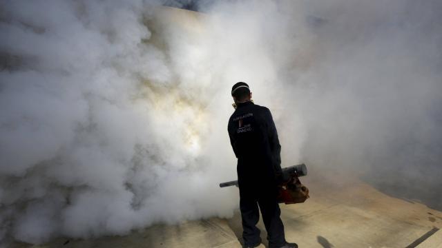 Avant le début des recherches scientifiques pour l'élaboration d'un vaccin contre le Zika, on utilisait la pulvérisation d'insecticides qui furent fatals aux abeilles ©Reuters