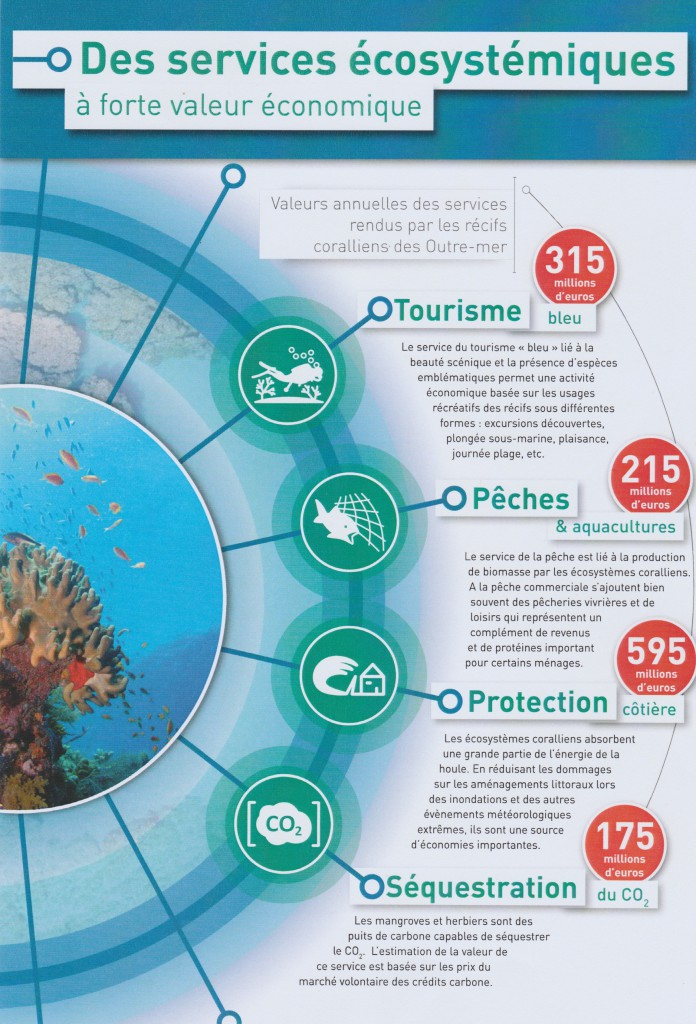 Les différents services rendus par les coraux et leur dimension économique ©IFRECOR