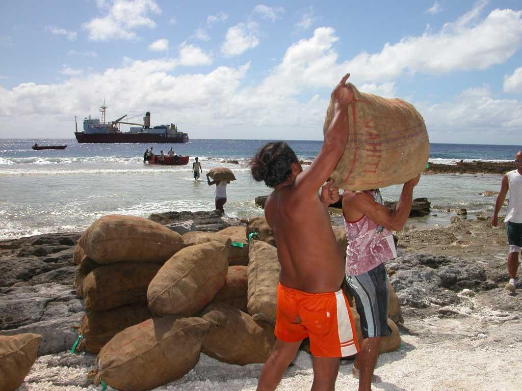 La culture du Coprah (huile de coco) est un des principaux leviers économiques de la Polynésie ©DR