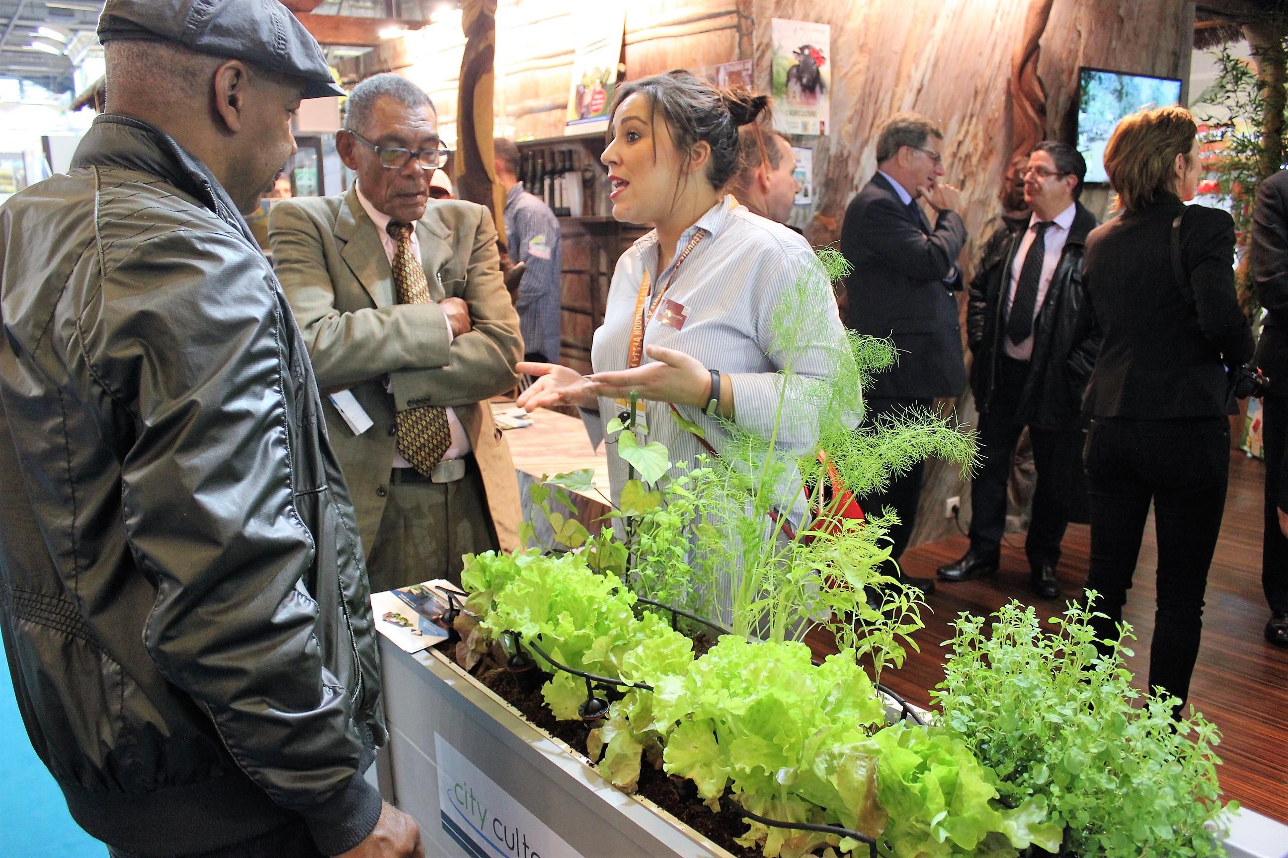 Installés tout autour de la case Kanak de la Nouvelle-Calédonie au Salon de l'Agriculture, les potagers City Culteurs ont suscité beaucoup d'attention ©Outremers360