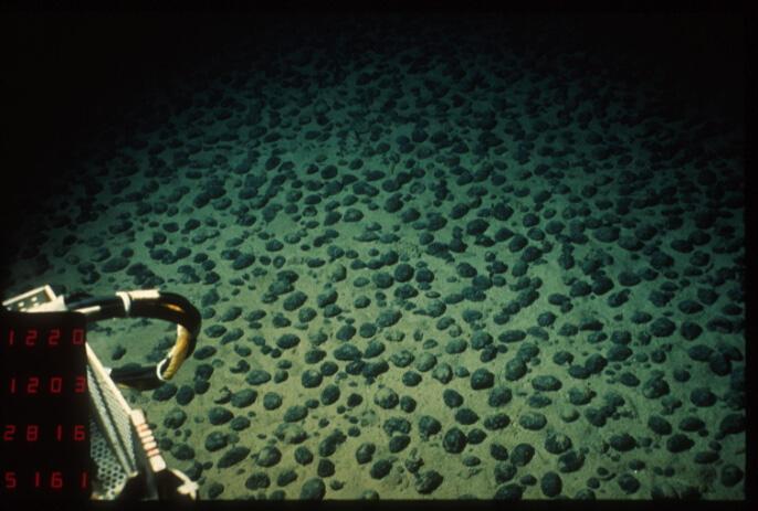 Champ de nodules polymétalliques de type C dans le Pacifique équatorial nord, photo prise depuis le sous-marin Nautile - Campagne NODINAUT ©Ifremer