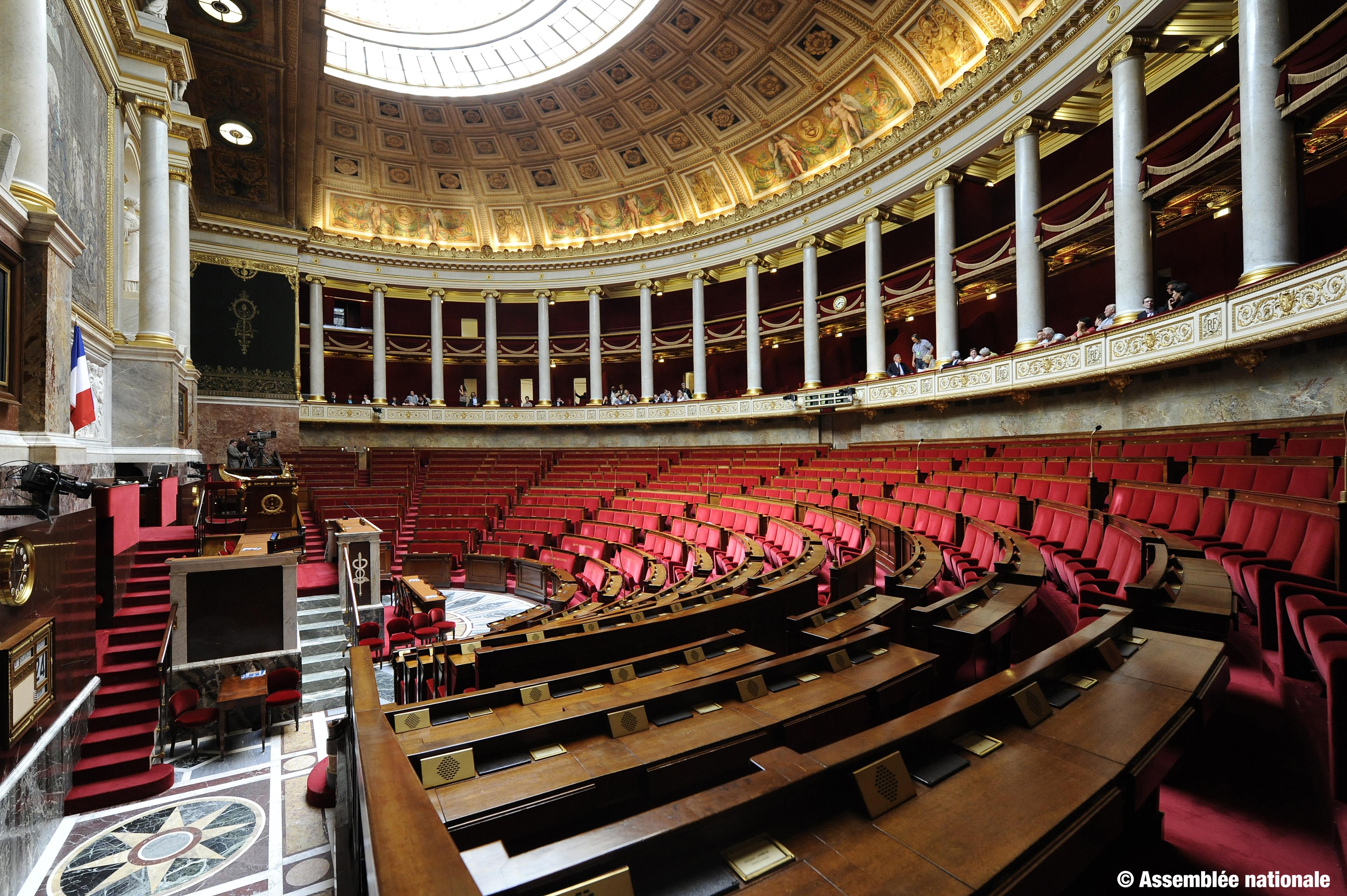 [INFOGRAPHIE] Assemblée Nationale:  Quels groupes politiques ont choisi les députés ultramarins ?