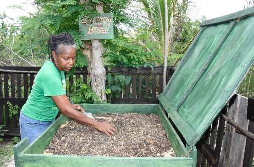 Une productice jamaïcaine d'huile de ricin © Lionel Rookwood