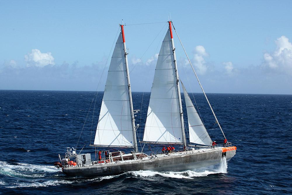En expédition dans tout le Pacifique, les chercheurs de la goelette Tara ont constaté un blanchissement massif des récifs coralliens ©Vuarnet.com