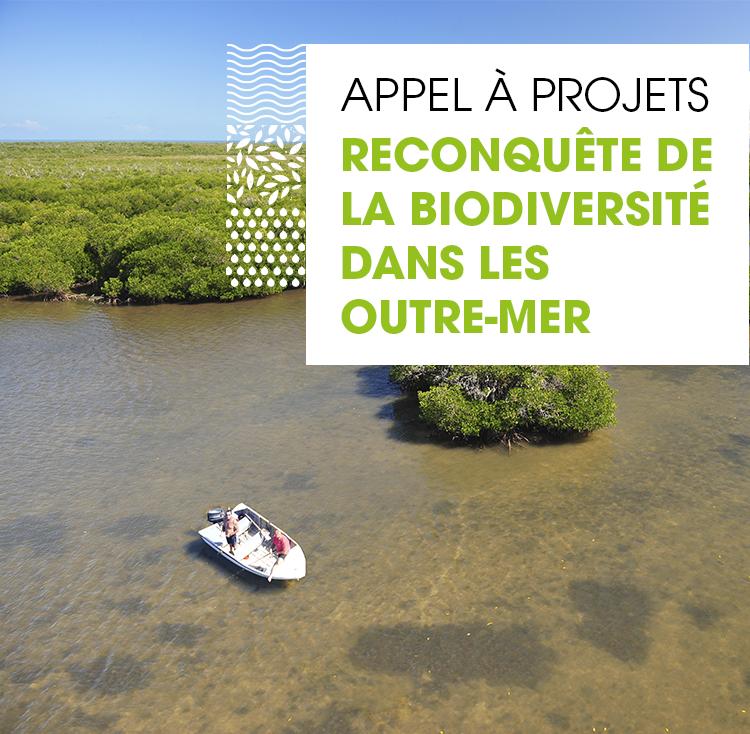 Biodiversité: L'Agence Française de la Biodiversité lance un appel à projets pour la reconquête de la biodiversité en Outre-mer