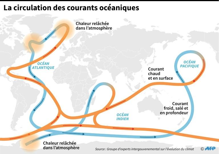 La circulation des courants océaniques ©AFP