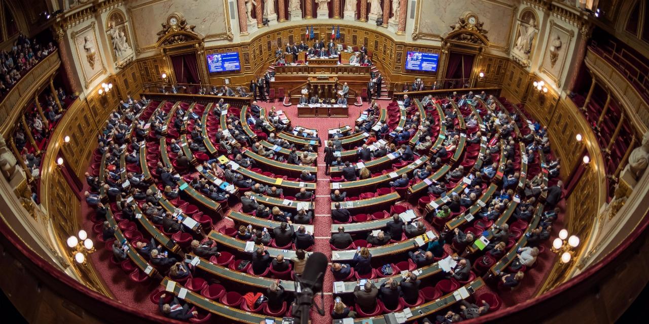 Concurrence en Polynésie : Le Sénat adopte l'ordonnance adaptant des dispositions du Code de commerce