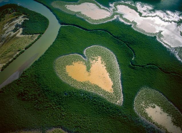 Une des mangroves les plus connues au monde:le coeur de Voh en Nouvelle-Calédonie ©Yann Arthus Bertrand