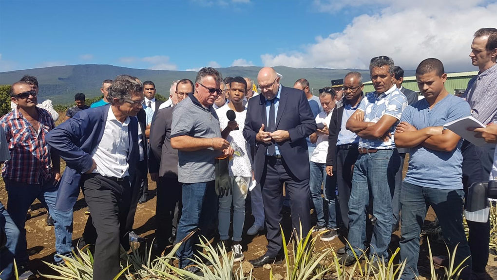 Stéphane Travert à La Réunion : Le ministre de l'Agriculture entre aides européennes, aides de l'État et avenir de la filière canne
