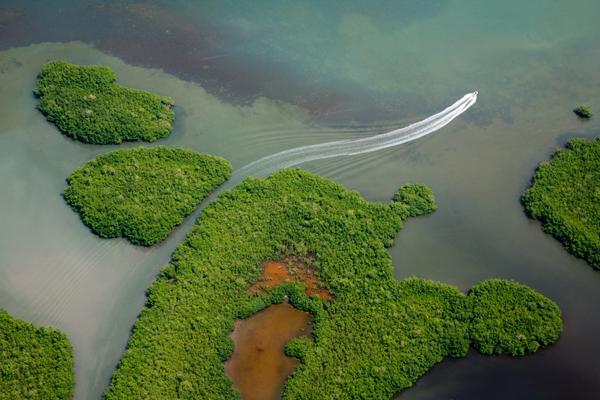 Biodiversité: La Guadeloupe, troisième région ultramarine à installer son agence régionale de biodiversité