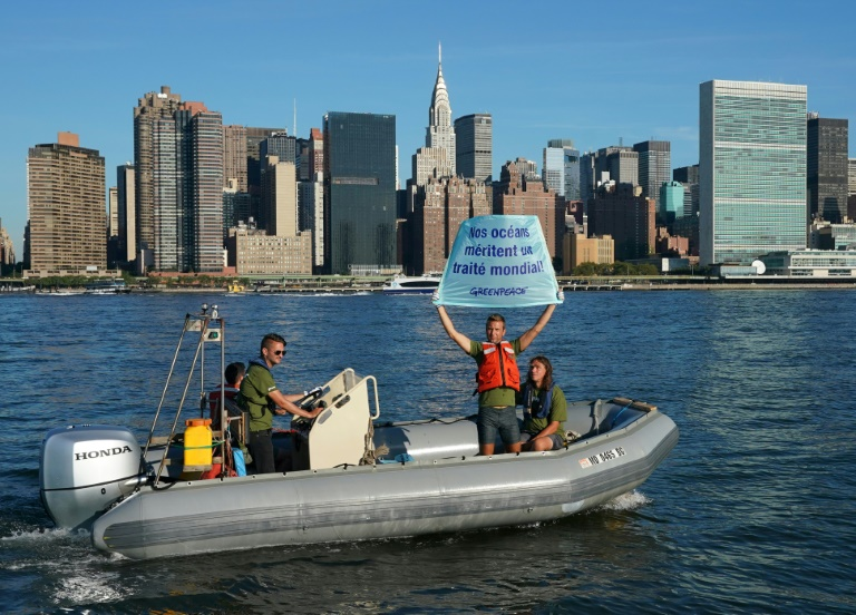 Des militants de Greenpeace brandissent une pancarte près des Nations unies à New York le 4 septembre 2018 ©Don Emmert / AFP