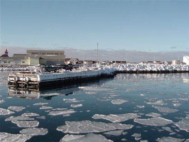 Saint-Pierre-et-Miquelon: Une plateforme de recherche dédiée à la zone subarctique bientôt lancée