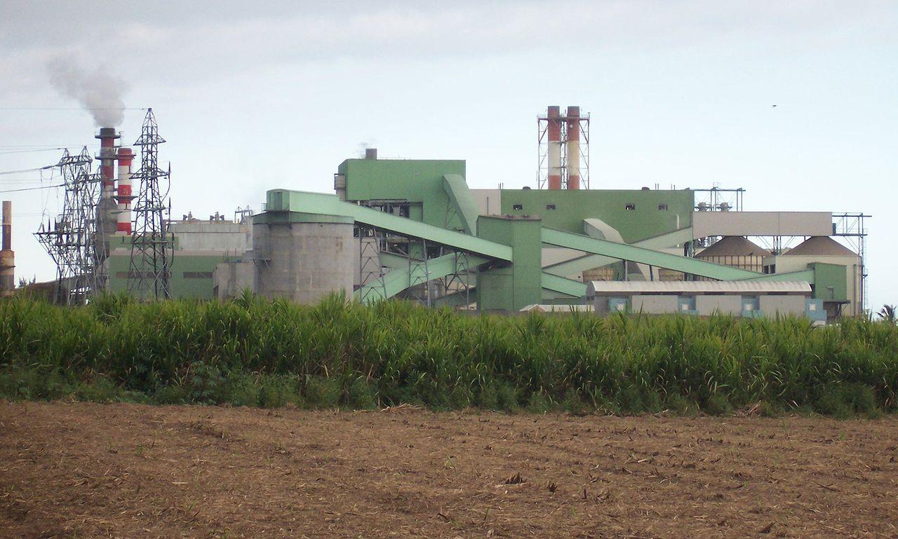 Énergies à La Réunion : La Biomasse ne comblera pas la sortie du charbon
