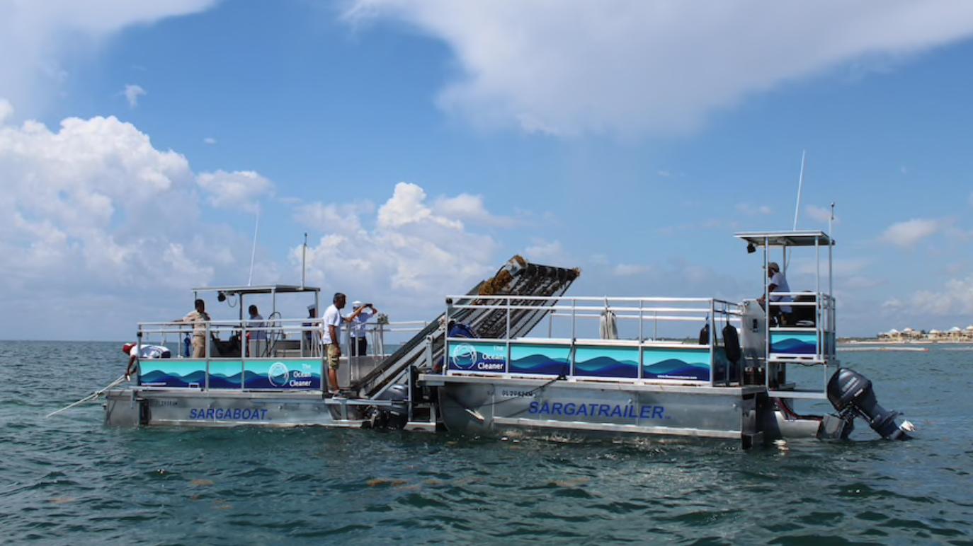Des bateaux québécois à la poursuite des algues sargasses du Mexique