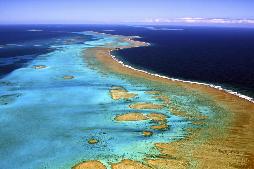 Biodiversité : La Nouvelle-Calédonie candidate pour devenir « Territoire d'Innovation »