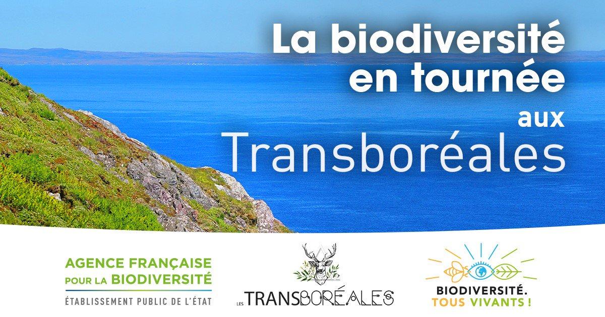 La biodiversité à l'honneur au festival Les Transboréales de Saint-Pierre-et-Miquelon