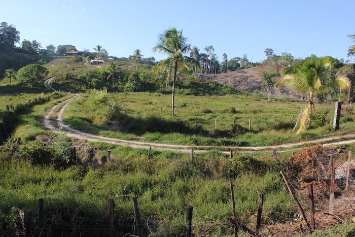 En Guyane, les coutumiers réunis pour « récupérer les terres »