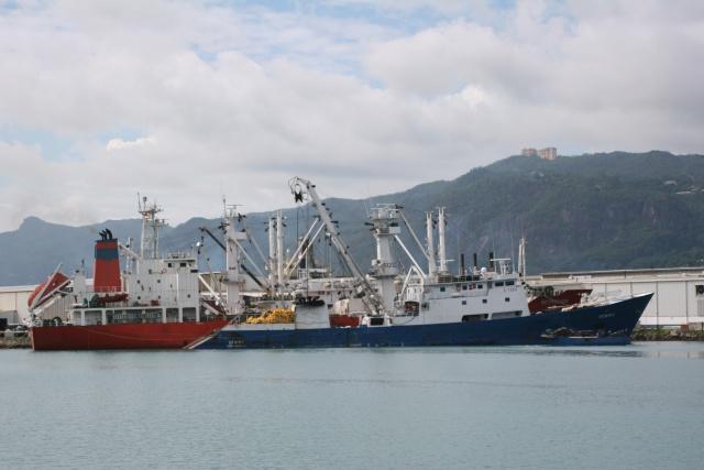 Pêche à Mayotte : Le député Mansour Kamardine souhaite un état des lieux de l'exploitation halieutique dans la ZEE mahoraise