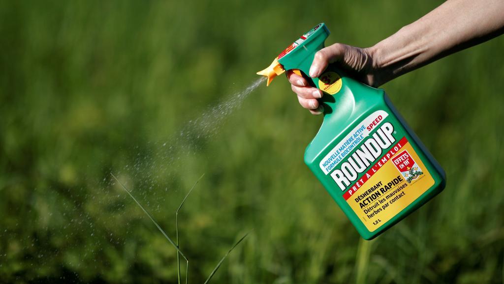 Santé : Les Réunionnais positifs au glyphosate selon une enquête