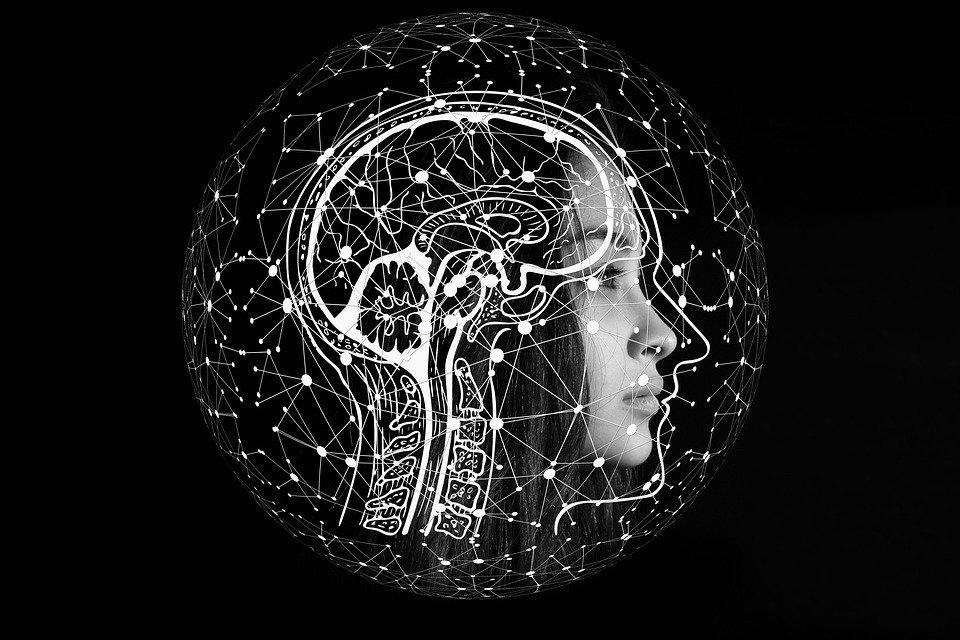 EXPERTISE. Intelligence Artificielle : La diversité au secours des algorithmes, par Valérie Morignat