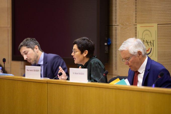 Audition de la Ministre des Outre-mer Annick Girardin par la délégation sénatoriale aux Outre-mert © Twitter Michel Magras