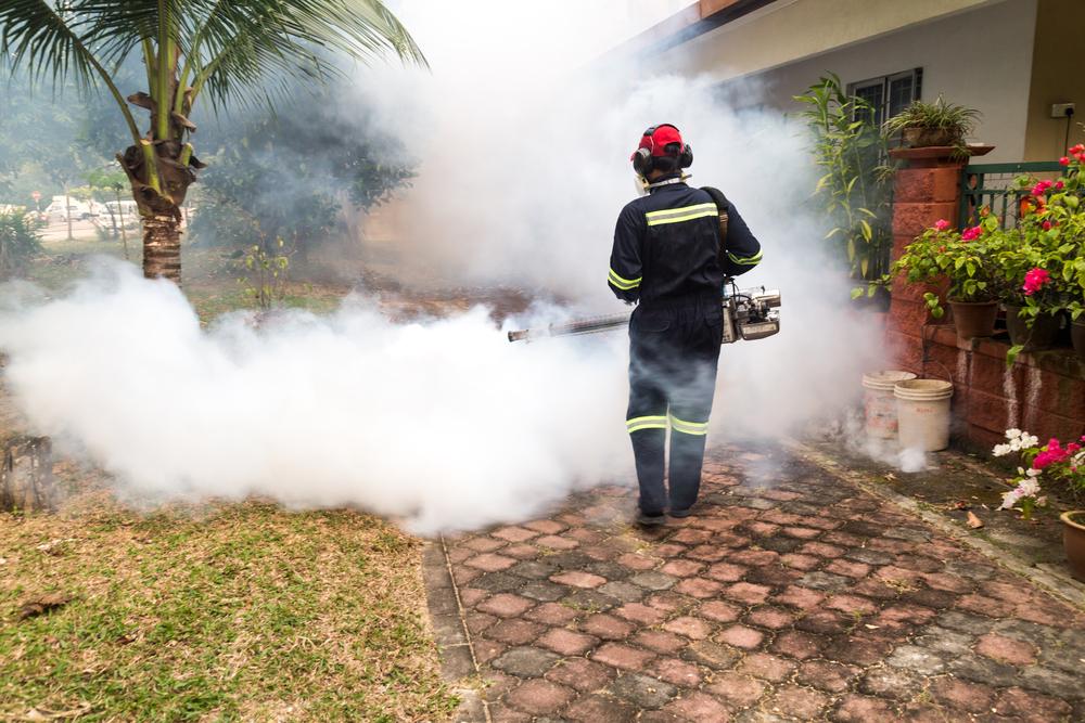Une campagne de pulvérisation anti-moustique en Polynésie française ©Shutterstock