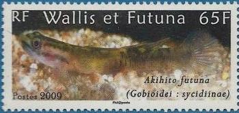 Akihito-futuna