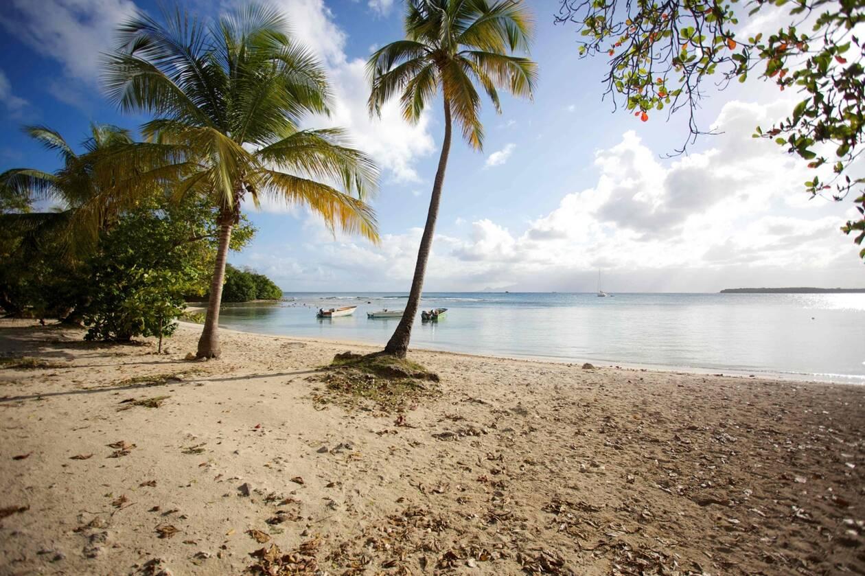 Antilles : Les plages rouvertes pour 19 communes en Guadeloupe, 12 en Martinique