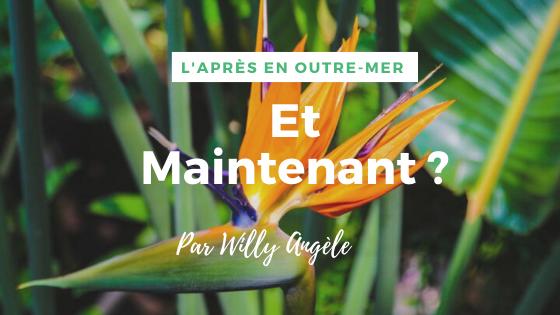 L'Après en Outre-mer : Et maintenant ? par Willy Angèle, Directeur général du GEIQ Archipel Guadeloupe et Président de l'IUT de Guadeloupe