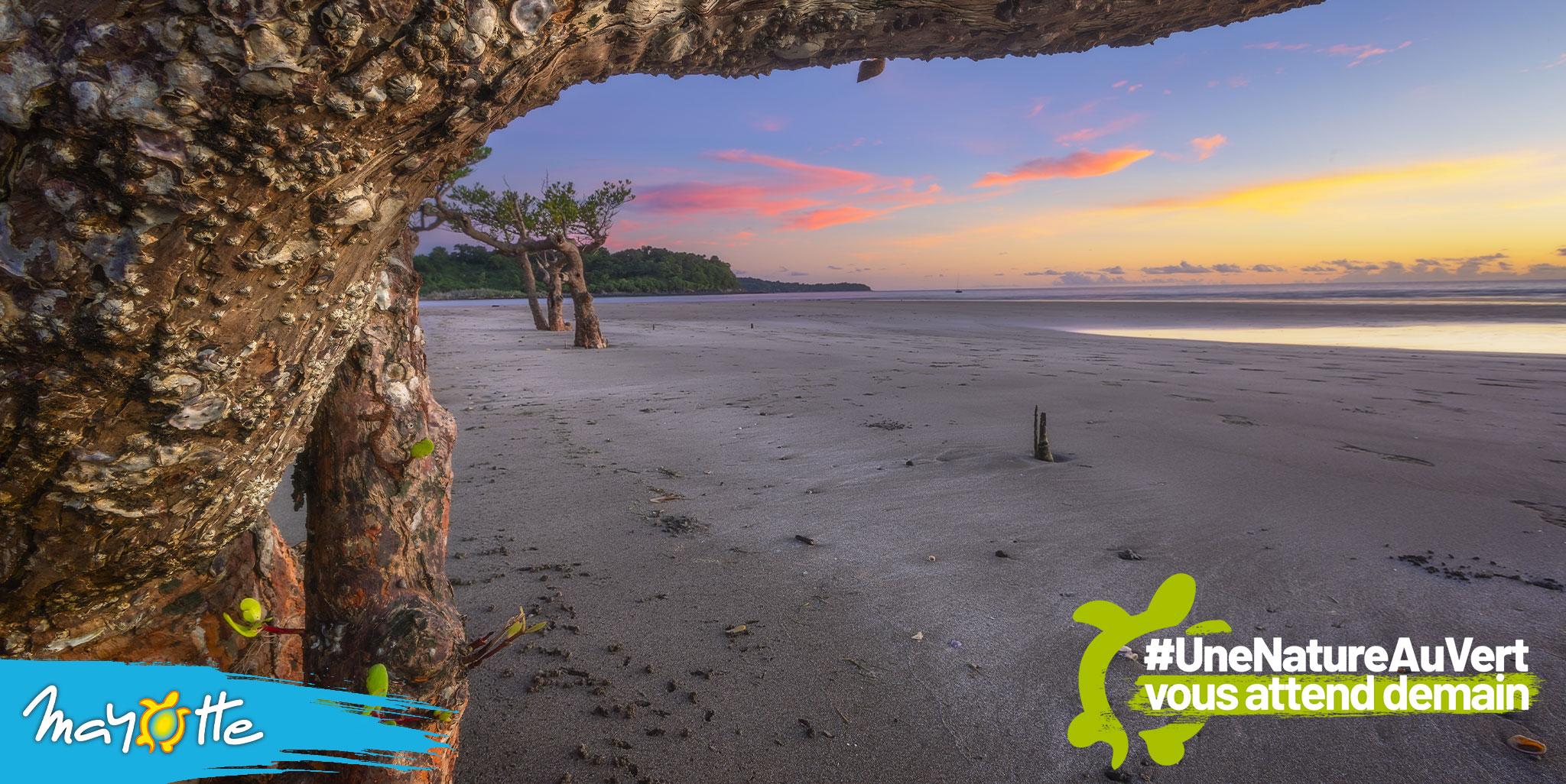 Tourisme : À Mayotte, le département mise sur 1 000 chambres supplémentaires d'ici 10 ans