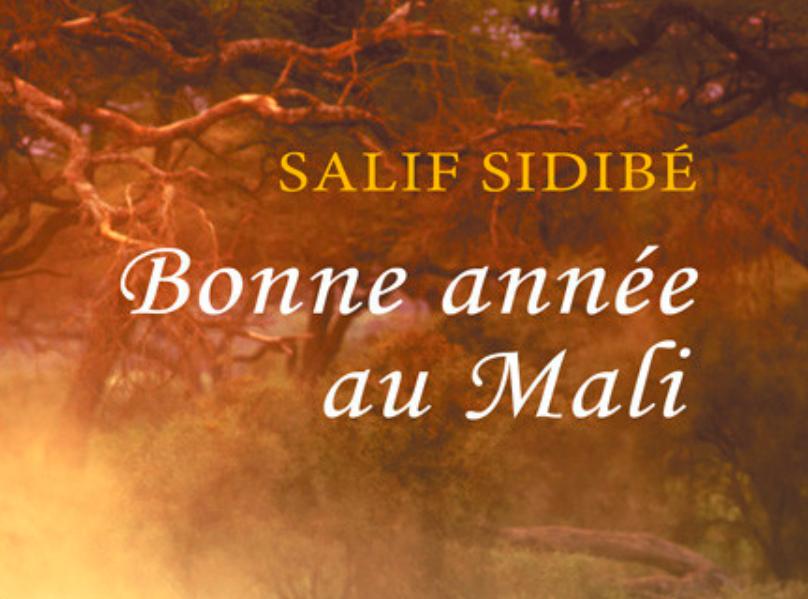 « Bonne année au Mali » de l'auteur guadeloupéen Salif Sidibé : Un hymne à l'Afrique et à ses traditions