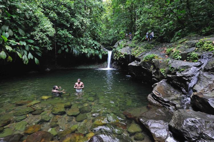 Guadeloupe : Le Parc national présente un plan d'aide pour la reprise
