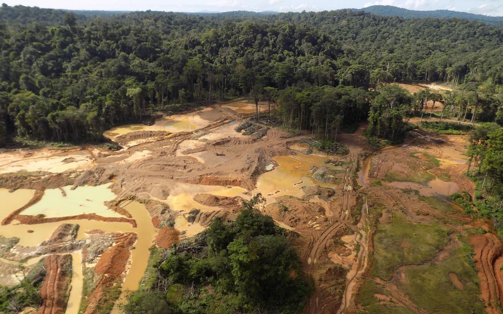 Orpaillage illégal en Guyane : Des saisies en « quantités industrielles » selon l'Armée