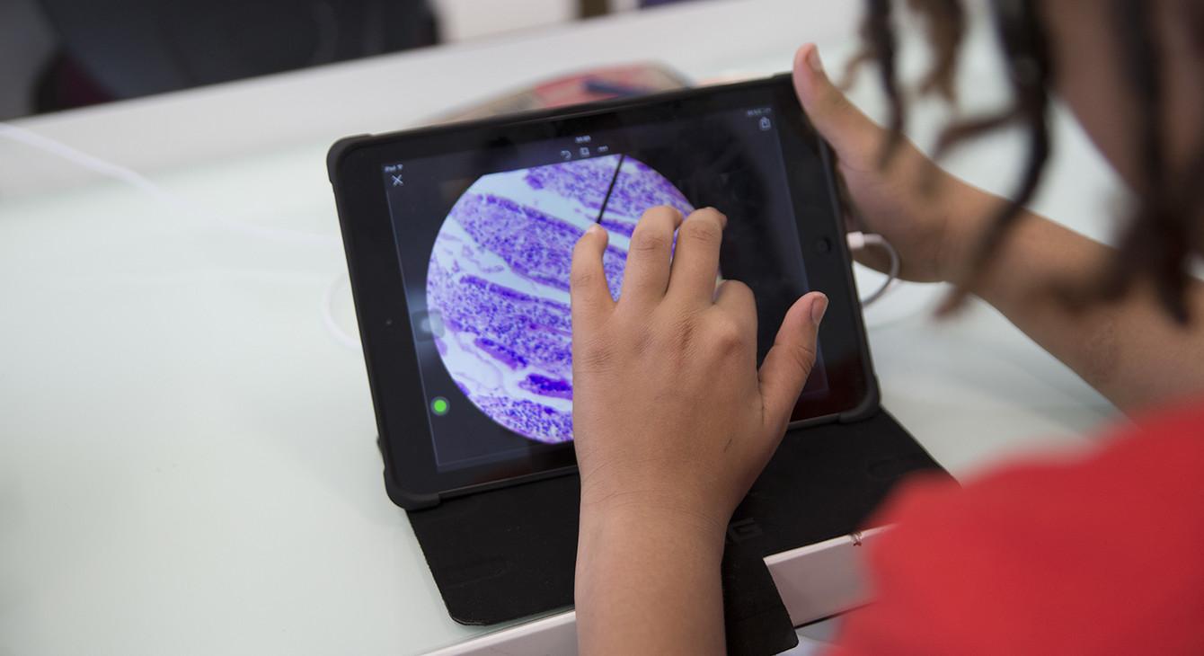 Guyane : Organisation des états généraux du numérique pour l'éducation