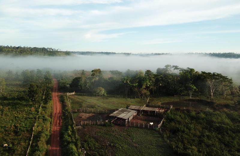 En Amazonie, un partenariat de développement et de lutte contre la déforestation : TerrAmaz