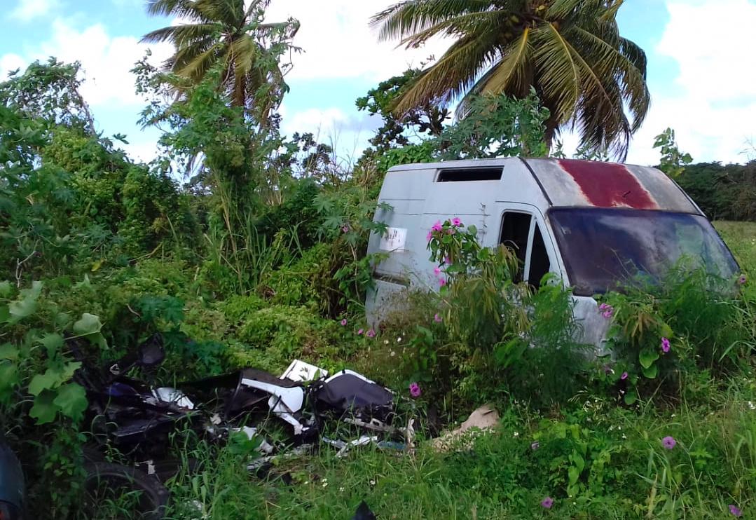 Guadeloupe : Pointe-à-Pitre se dote d'une application pour collecter les déchets