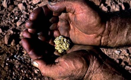 Guyane: le gouvernement va nommer «un responsable chargé de la filière aurifère»