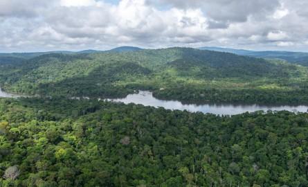 Feux en Amazonie : La Guyane, légitimité de la France dans la crise amazonienne