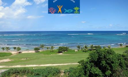 Environnement en Guadeloupe: Une aire marine éducative bientôt créée au Moule