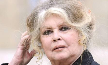 Propos injurieux de Bardot contre les Réunionnais: le gouvernement condamne, le préfet saisit le procureur