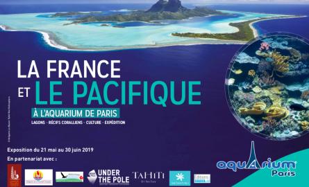 À l'Aquarium de Paris, le Pacifique à l'honneur jusqu'au 30 juin