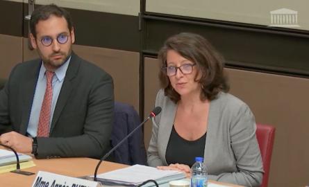 Chlordécone: Buzyn veut un plan «plus ambitieux» en 2020