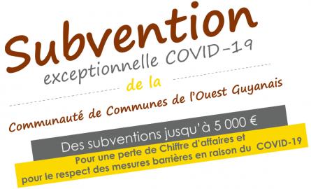 La Communauté de communes de l'Ouest guyanais mobilise 1 million d'euros d'aide aux entreprises