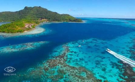 Consacré à la Polynésie, le magazine Thalassa rassemble 1,6 million de téléspectateurs